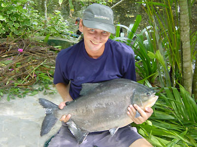 Pacu from Par Lai Lake in Phuket.