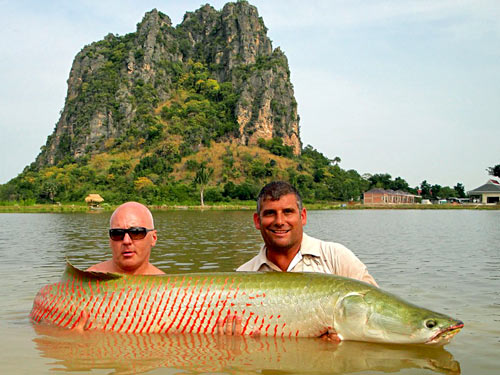 Arapaima from Jurassic Fishing Park.