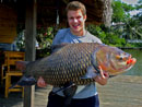 Massive Giant Siamese Carp from Bangkok!