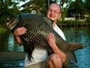 Beautiful Giant Siamese Carp.