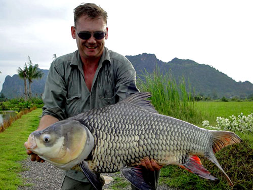 Giant Siamese Carp at Jurassic Fishing Park.