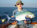 Bluefin Trevally from The Andaman Islands.