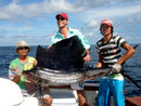 Sailfish from The Racha Islands Phuket.